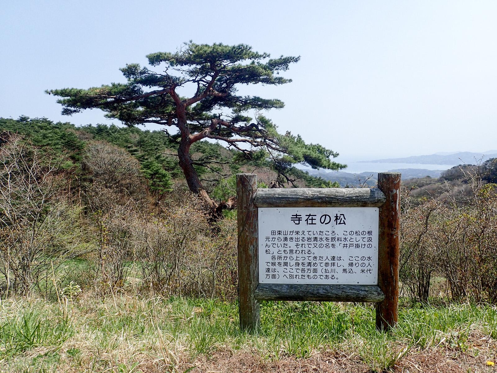 つつじ咲き誇る、名峰田束山