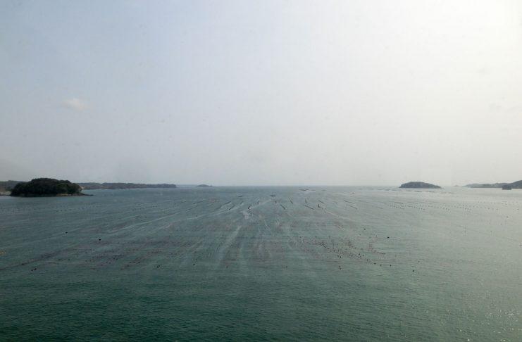 南三陸町の森・里・海・ひとを活かしたまちづくり vol.2