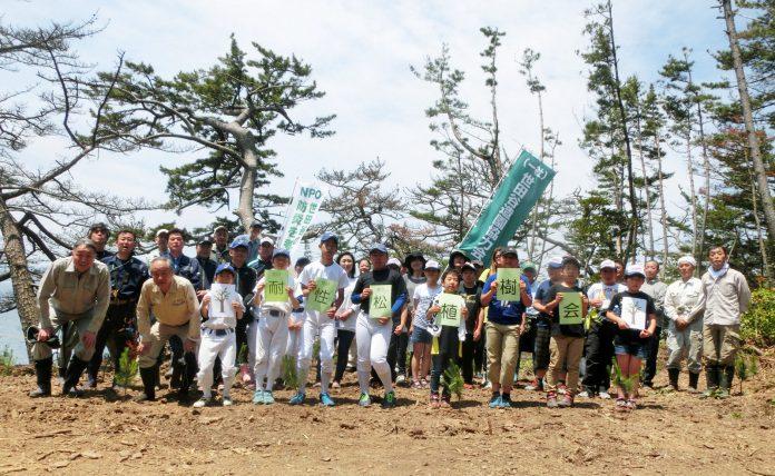 美しい松林を、みんなの力で取り戻そう「耐性松植樹会」(歌津地区泊浜尾崎)