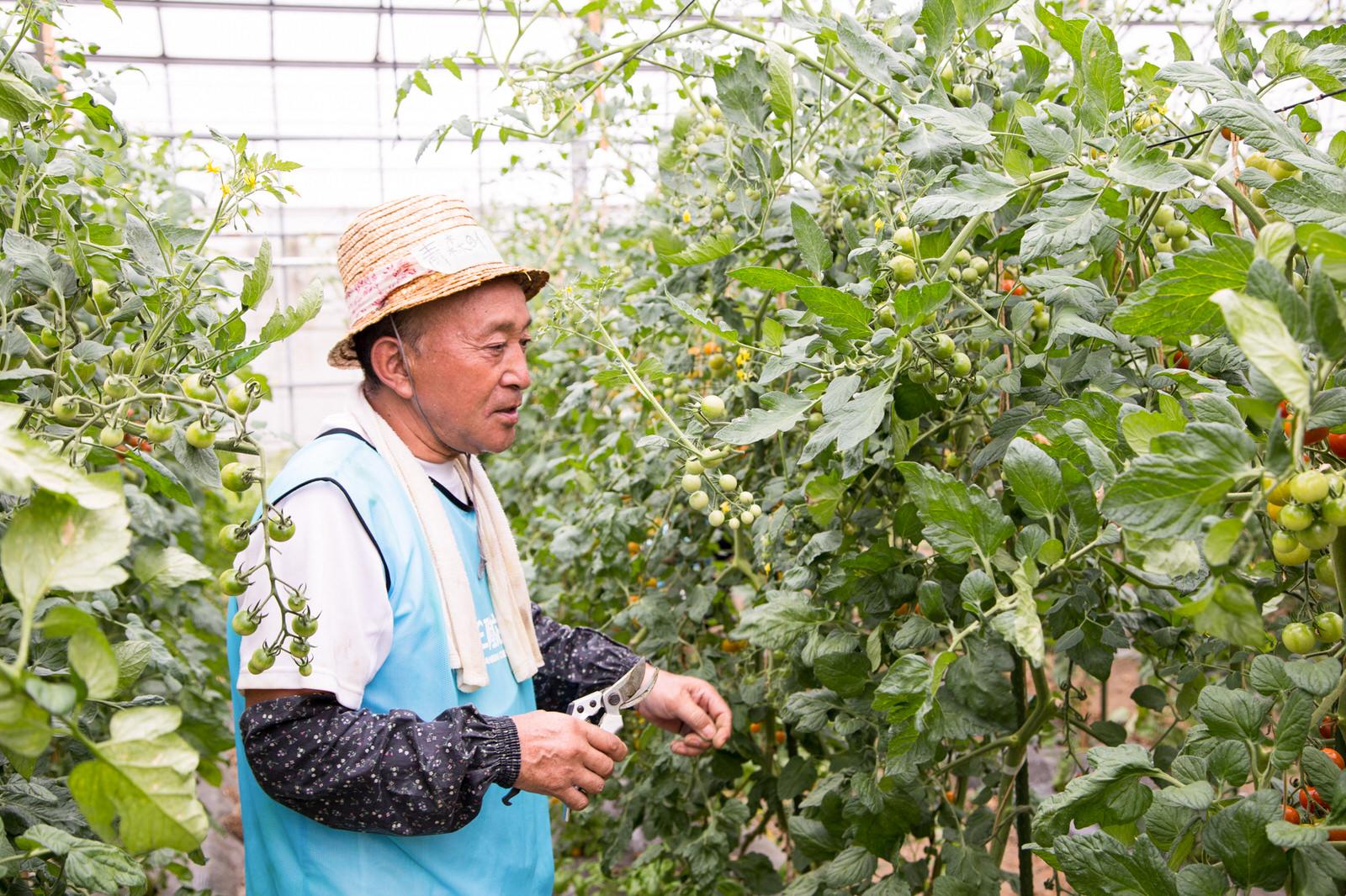 農工房おでってリピーターの青森の男性。さすがの慣れた手つきで、どんどん作業を進めていく