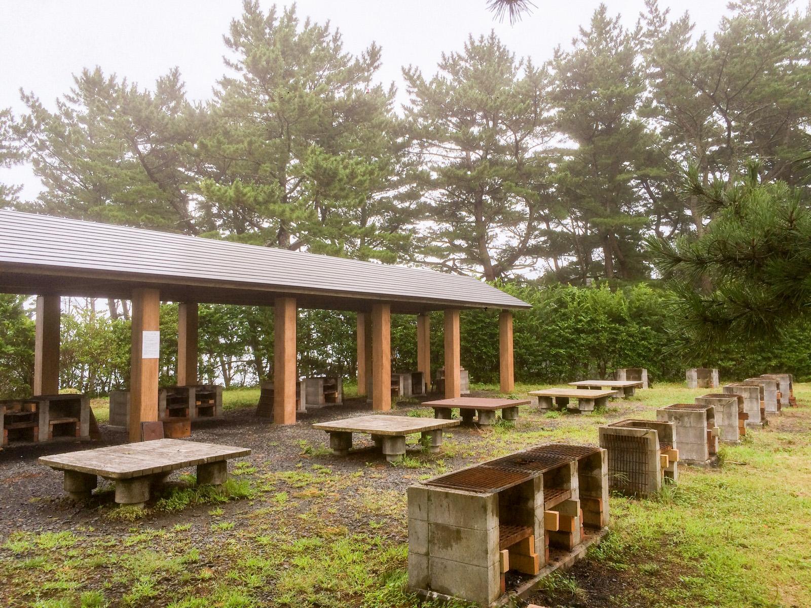 海辺の自然を大満喫!神割崎キャンプ場まるわかりインタビュー
